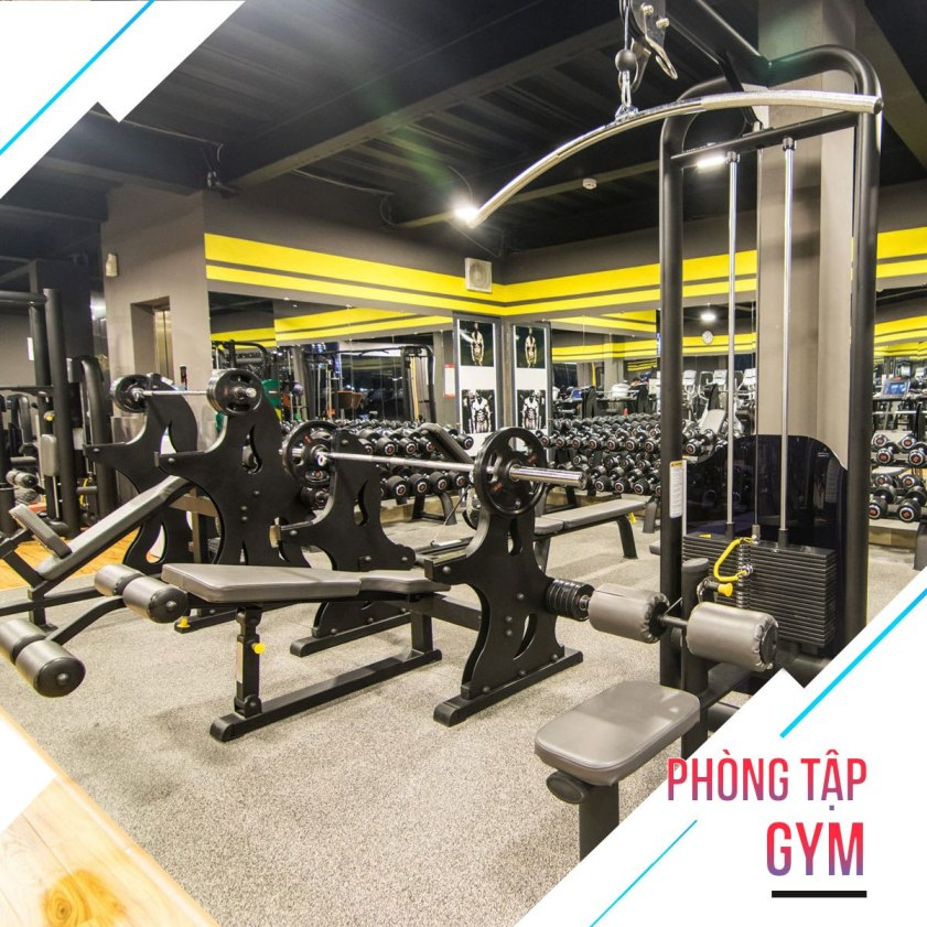 phòng tập new fitness yoga center