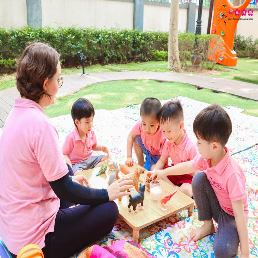 review trường Sakura Montessori